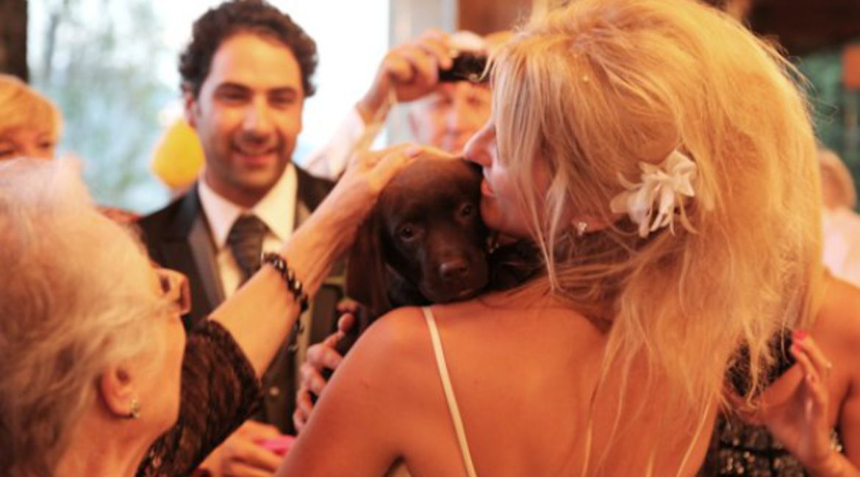 Aquí teniu el casament de l'Albert & la Marta que es van casar l'11.09.2012 al Mas de Sant Lleí